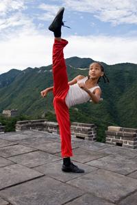 kung fu roundhouse kick