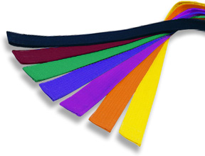 the various coloured belts in karate