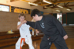 kids karate demo