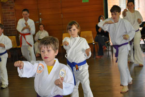 Kids doing martial arts kata, which helps focus and memorization