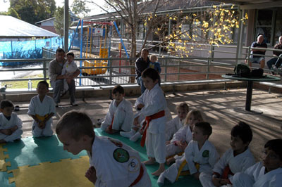 karate kids rising to the challenge